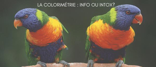 Colorimétrie : info ou intox, le vrai du faux
